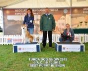 expo turda 2015-3